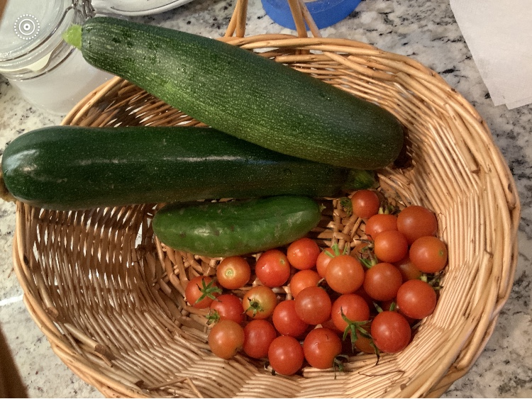 zucchini and tomatoes from Wendy Sheridan's garden